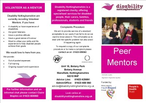 Peer mentoring project